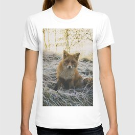 CLOSE-UP PHOTOGRAPHY OF FAX SITTING ON GREEN GRASS FIELD AT DAYTIME T-shirt