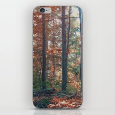 into the woods 13 iPhone & iPod Skin