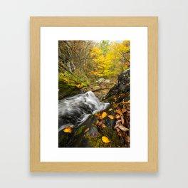 Cascade and Tree.  Doyle's River, Shenandoah National Park. Framed Art Print