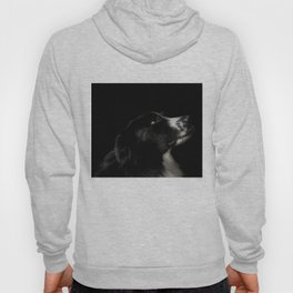 Border Collie Portrait - Bamboo Hoody