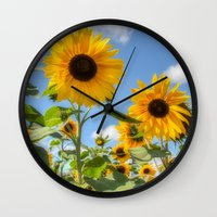 sunflowers Wall Clocks featuring Sunflowers by David Tinsley