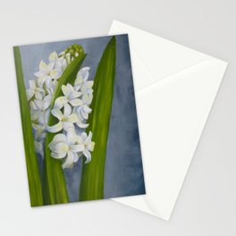 White hyacinth. Painting Stationery Cards