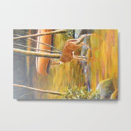 Splendor of nature bambi | Splendeur de nature bambi Metal Print