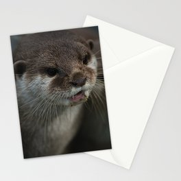 Otterly Sweet Face Stationery Cards
