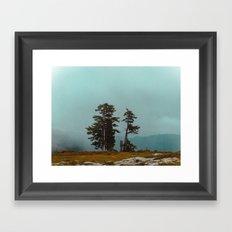 Pacific Northwest Wild Framed Art Print