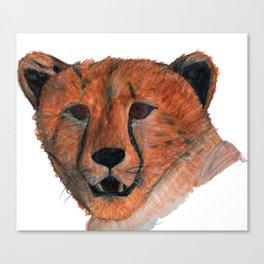 Cub face Canvas Print