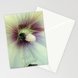 Bee Amazing Stationery Cards