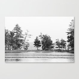 Lake Line Canvas Print