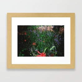 Summer #2 Framed Art Print