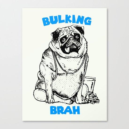 It's ok brah, I'm bulking Canvas Print