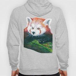 Red panda bear Hoody