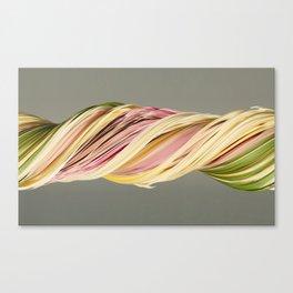 Old bouquet (slit scan) Canvas Print