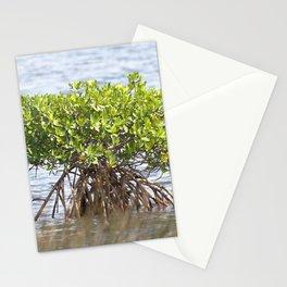 Watercolor Tree, Side, Mangrove 01, Gulf Island Beach, Florida Stationery Cards