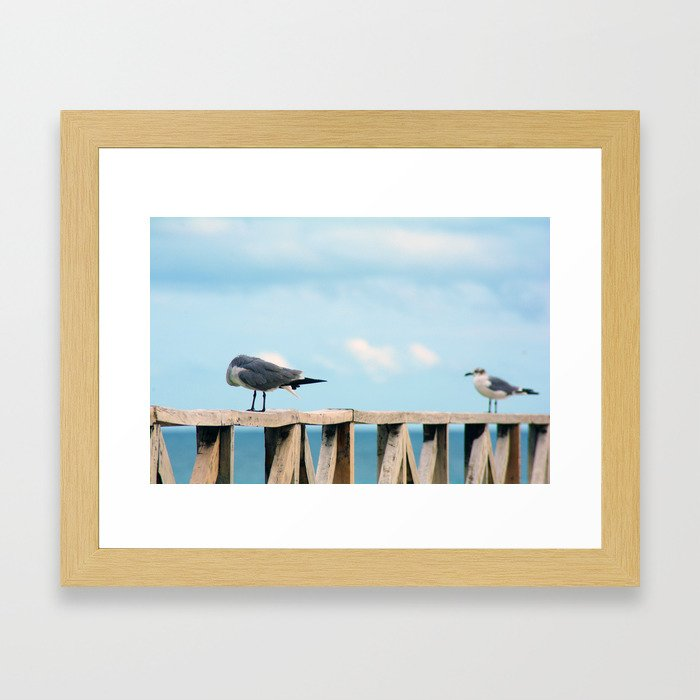 Bird collection _02 Framed Art Print