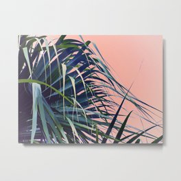 Feather Palm Metal Print
