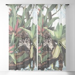 Ring tailed Coati Sheer Curtain