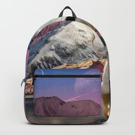 Bather Backpack