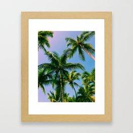 dominican palms Framed Art Print