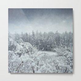 winterscape Metal Print
