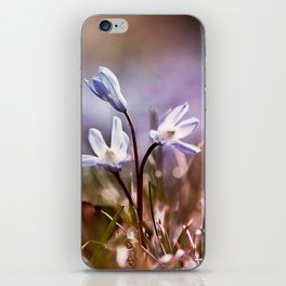 spring is just around the corner  iPhone Skin