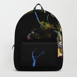 CARABOU I Backpack