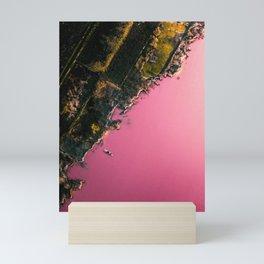 Rare Pink Lake in Spain Mini Art Print
