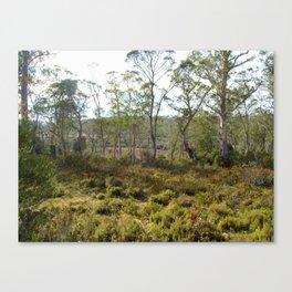 Mountain bush 2 Canvas Print