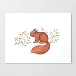 Furry Squirrel Canvas Print