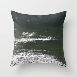 ducks one Throw Pillow