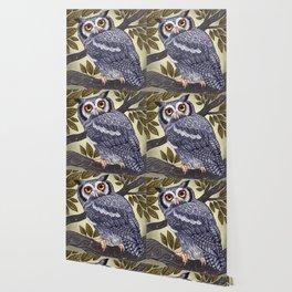 White Faced Owl Wallpaper
