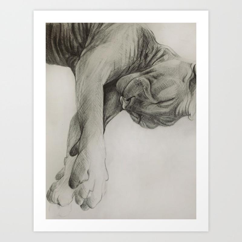 Pencil drawing kitten sphinx graphic art art print