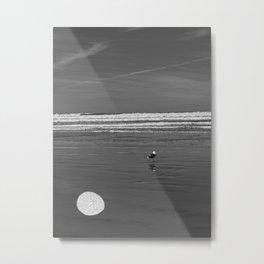 Pacific Ocean Sand Dollar Metal Print