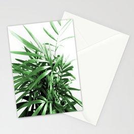 Palm Plant Stationery Cards