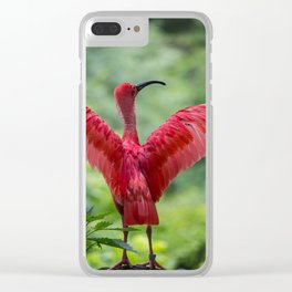 scarlet ibis Clear iPhone Case