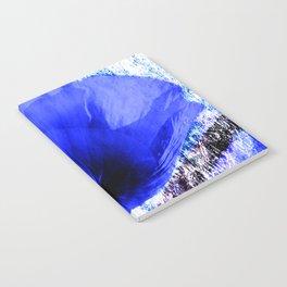 Blue Poppy vintage 222 Notebook