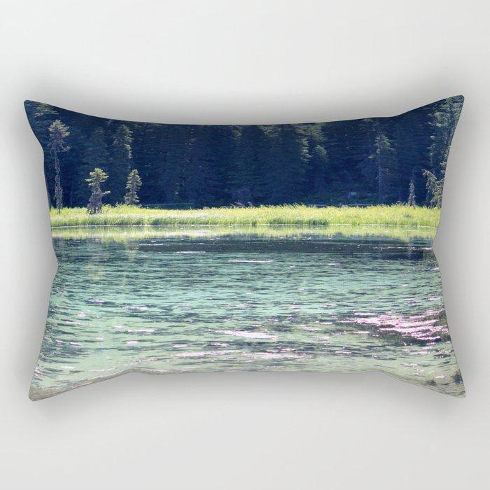 Pink and Teal Swamp Rectangular Pillow