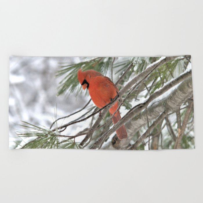Snow Globe Cardinal Beach Towel