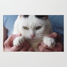 Displeased cat Rug