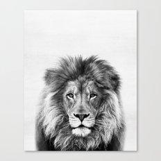 Lion Peekaboo print Canvas Print