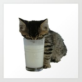 Cute Wild Kitten With A Glass Full of Optimism Art Print