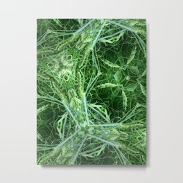Fairy Grass Metal Print