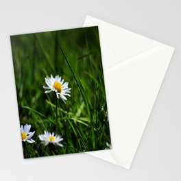 Margherite Stationery Cards