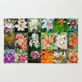 Lily Montage Rug