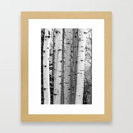 Into the Woods / Black & White Framed Art Print