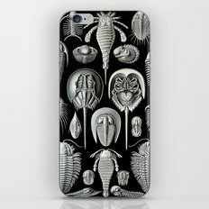 Trilobites and Fossils by Ernst Haeckel iPhone & iPod Skin