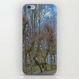 Castle garden Laupheim iPhone Skin