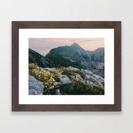 Mountain flowers at sunrise Framed Art Print