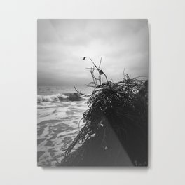 Black Sea Metal Print