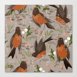 Robins Canvas Print