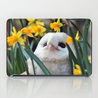 rocky iPad Cases featuring Rocky by Astrid Ewing